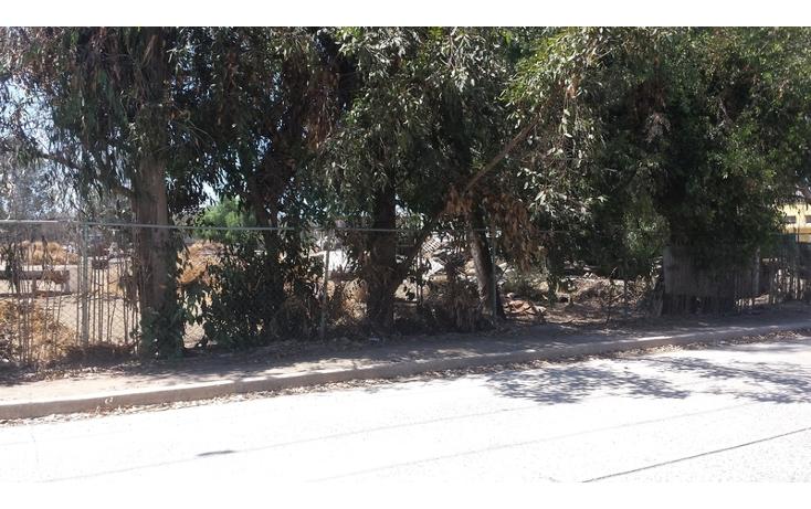 Foto de terreno habitacional en venta en  , el sauzal, ensenada, baja california, 498829 No. 06