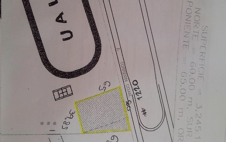 Foto de terreno comercial en renta en  , el tajito, torre?n, coahuila de zaragoza, 1307579 No. 06