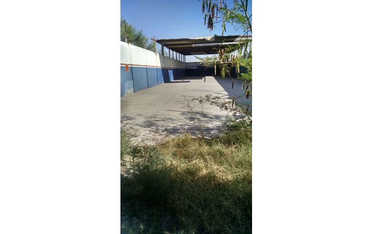 Foto de terreno habitacional en renta en  , el tajito, torre?n, coahuila de zaragoza, 1525853 No. 02