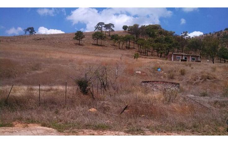 Foto de terreno habitacional en venta en el taray predio rustico el taraysn 00, el taray, tamazula de gordiano, jalisco, 1703530 no 06