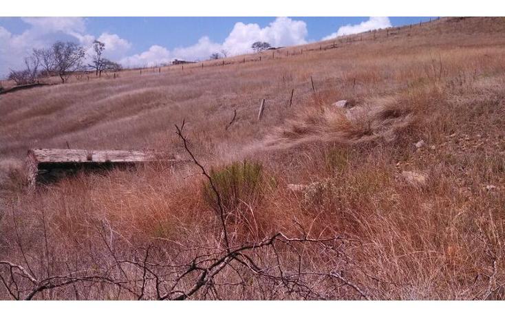 Foto de terreno habitacional en venta en el taray predio rustico el taraysn 00, el taray, tamazula de gordiano, jalisco, 1703530 no 08