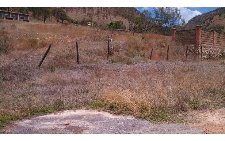 Foto de terreno habitacional en venta en el taray predio rustico el taraysn 00, el taray, tamazula de gordiano, jalisco, 1703530 no 09