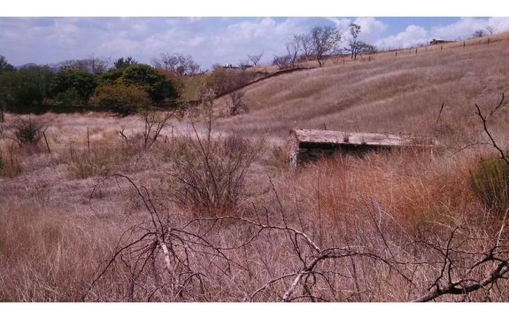 Foto de terreno habitacional en venta en el taray predio rustico el taraysn 00, el taray, tamazula de gordiano, jalisco, 1703530 no 11