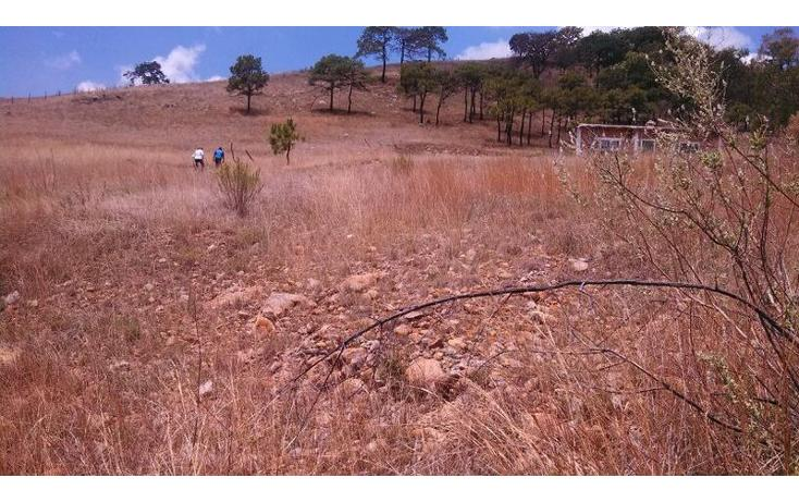 Foto de terreno habitacional en venta en el taray predio rustico el taraysn 00, el taray, tamazula de gordiano, jalisco, 1703530 no 13