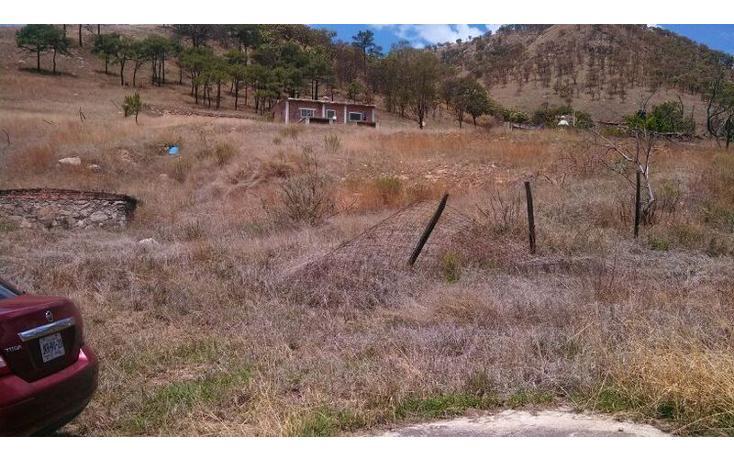 Foto de terreno habitacional en venta en el taray predio rustico el taraysn 00, el taray, tamazula de gordiano, jalisco, 1703530 no 14