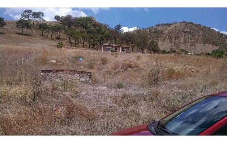 Foto de terreno habitacional en venta en el taray predio rustico el taraysn 00, el taray, tamazula de gordiano, jalisco, 1703530 no 17