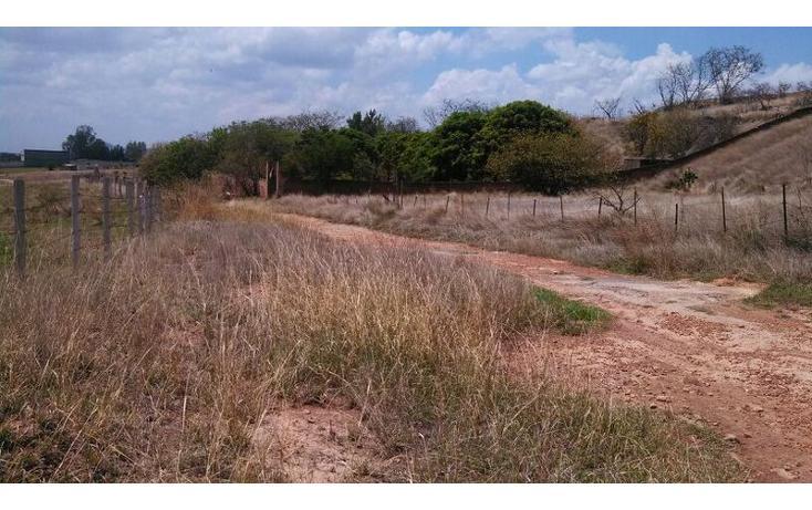 Foto de terreno habitacional en venta en el taray predio rustico el taraysn 00, el taray, tamazula de gordiano, jalisco, 1703530 no 18