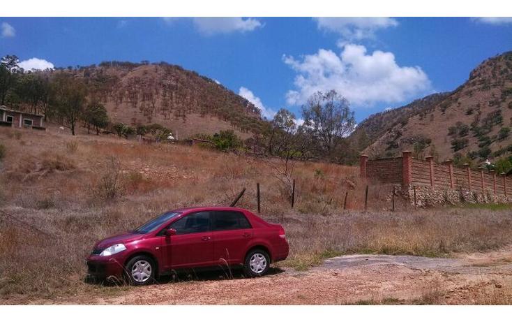 Foto de terreno habitacional en venta en el taray predio rustico el taraysn 00, el taray, tamazula de gordiano, jalisco, 1703530 no 20