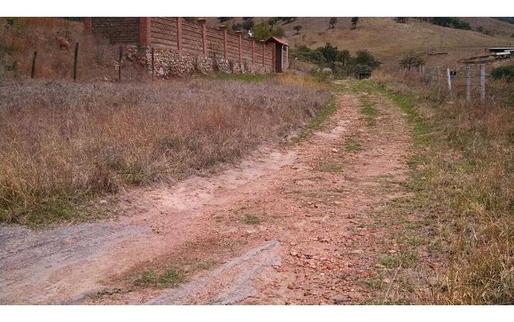 Foto de terreno habitacional en venta en el taray predio rustico el taraysn 00, el taray, tamazula de gordiano, jalisco, 1703530 no 22