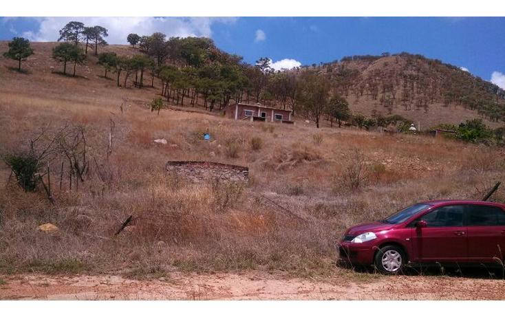 Foto de terreno habitacional en venta en el taray predio rustico el taraysn 00, el taray, tamazula de gordiano, jalisco, 1703530 no 23