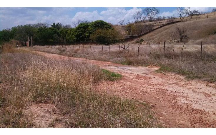 Foto de terreno habitacional en venta en el taray predio rustico el taraysn 00, el taray, tamazula de gordiano, jalisco, 1703530 no 24