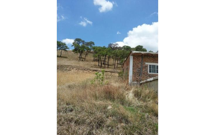 Foto de terreno habitacional en venta en el taray predio rustico el taraysn 00, el taray, tamazula de gordiano, jalisco, 1703530 no 25