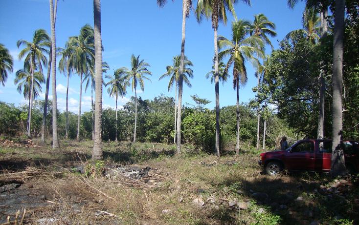 Foto de terreno comercial en venta en  , el tecomate pesquería, san marcos, guerrero, 1264307 No. 05