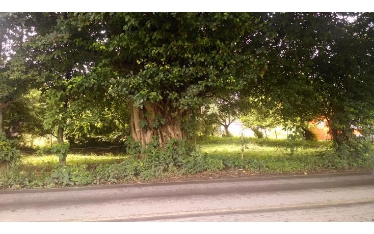 Foto de terreno habitacional en venta en  , el tejar, medell?n, veracruz de ignacio de la llave, 1419385 No. 03