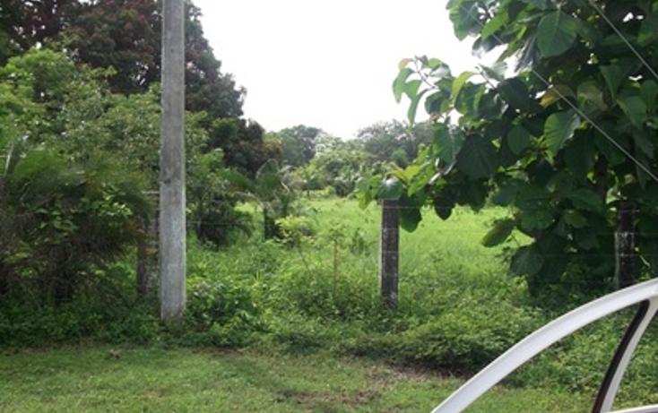 Foto de terreno habitacional en venta en  , el tejar, medellín, veracruz de ignacio de la llave, 1436059 No. 03