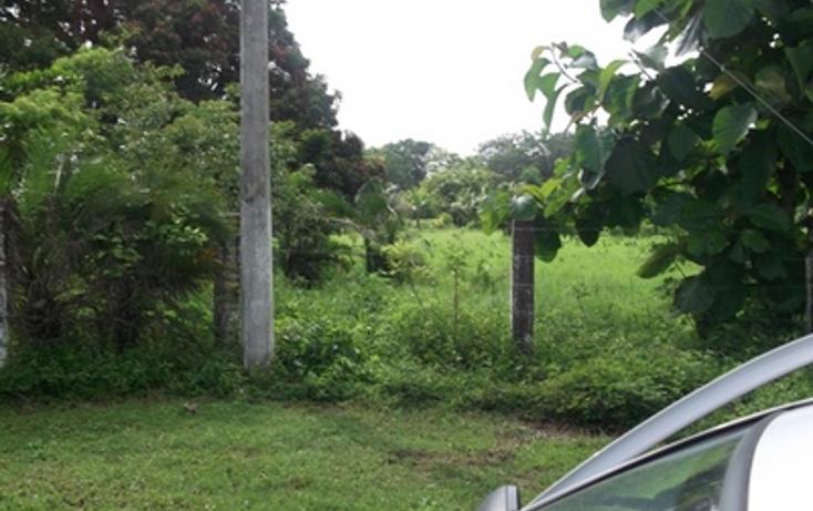 Foto de terreno habitacional en venta en  , el tejar, medellín, veracruz de ignacio de la llave, 1436059 No. 04