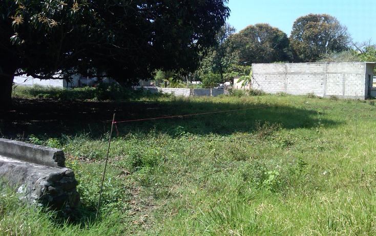 Foto de terreno comercial en venta en  , el tejar, medellín, veracruz de ignacio de la llave, 941873 No. 05
