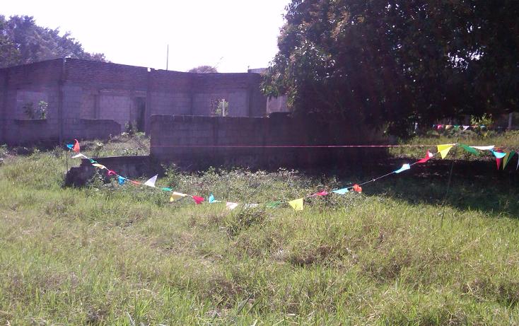 Foto de terreno comercial en venta en  , el tejar, medellín, veracruz de ignacio de la llave, 941873 No. 07