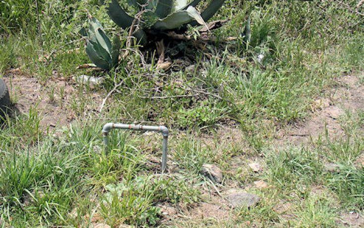 Foto de terreno habitacional en venta en, el tejocote, tequisquiapan, querétaro, 1248933 no 05