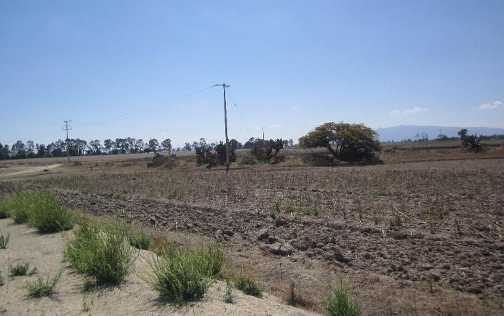 Foto de terreno comercial en venta en  , el tesoro, polotitlán, méxico, 1463033 No. 01