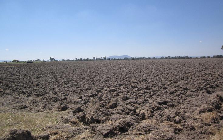 Foto de terreno comercial en venta en  , el tesoro, polotitlán, méxico, 1463033 No. 03