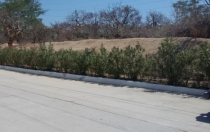 Foto de terreno habitacional en venta en  , el tezal, los cabos, baja california sur, 1524865 No. 05
