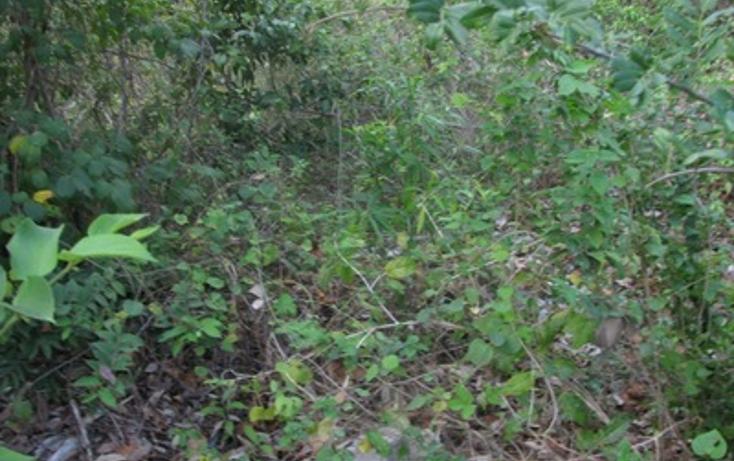 Foto de terreno habitacional en venta en  , el tigrillo, solidaridad, quintana roo, 1098189 No. 01