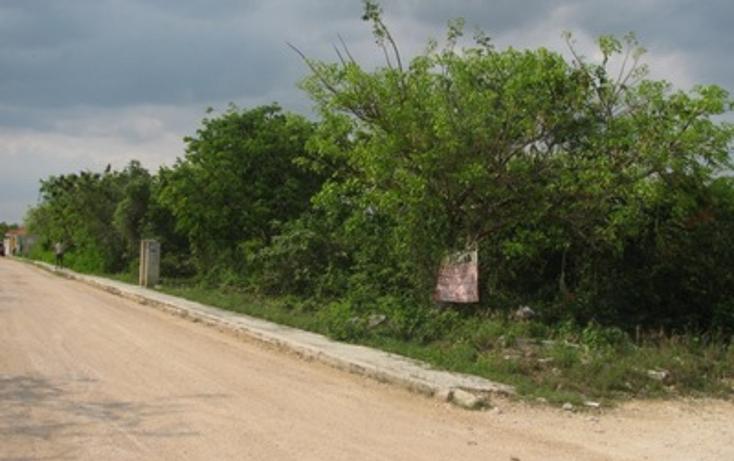 Foto de terreno habitacional en venta en  , el tigrillo, solidaridad, quintana roo, 1098189 No. 02