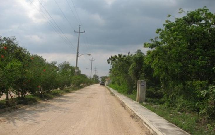 Foto de terreno habitacional en venta en  , el tigrillo, solidaridad, quintana roo, 1098189 No. 03