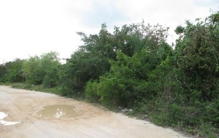 Foto de terreno habitacional en venta en  , el tigrillo, solidaridad, quintana roo, 1098189 No. 04