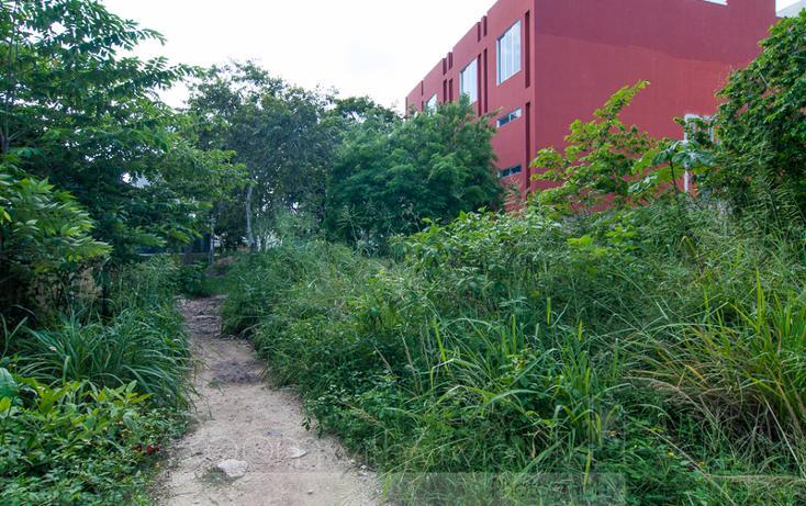 Foto de terreno comercial en venta en  , el tigrillo, solidaridad, quintana roo, 1491199 No. 01
