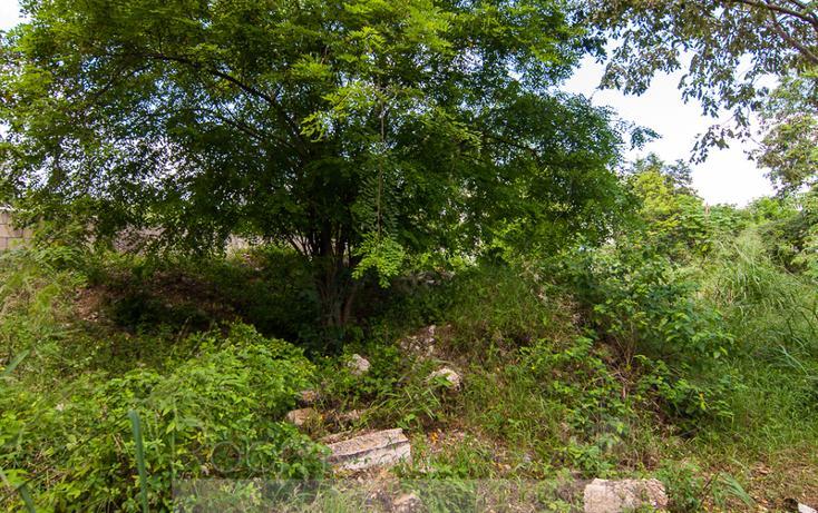 Foto de terreno comercial en venta en  , el tigrillo, solidaridad, quintana roo, 1491199 No. 06