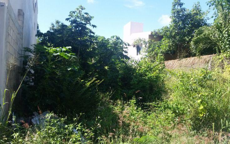 Foto de terreno habitacional en venta en, el tigrillo, solidaridad, quintana roo, 1551246 no 02