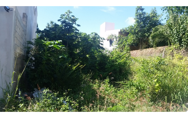 Foto de terreno habitacional en venta en  , el tigrillo, solidaridad, quintana roo, 1551246 No. 02