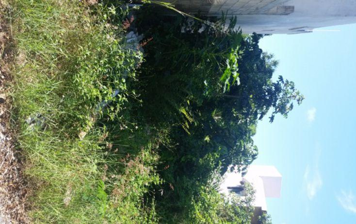 Foto de terreno habitacional en venta en, el tigrillo, solidaridad, quintana roo, 1551246 no 06