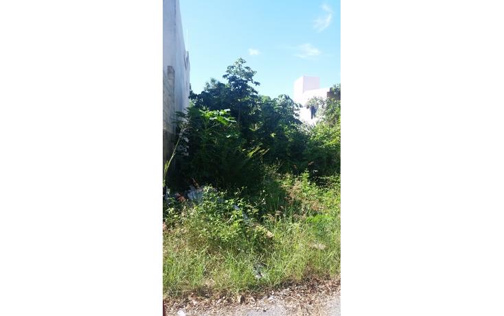 Foto de terreno habitacional en venta en  , el tigrillo, solidaridad, quintana roo, 1551246 No. 06