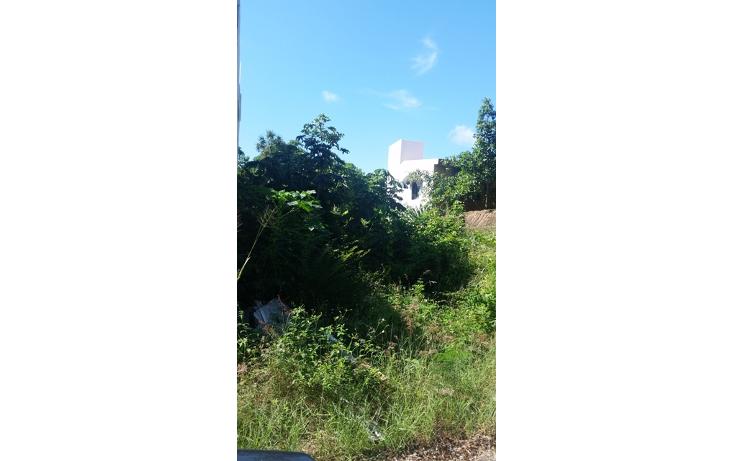 Foto de terreno habitacional en venta en  , el tigrillo, solidaridad, quintana roo, 1551246 No. 07