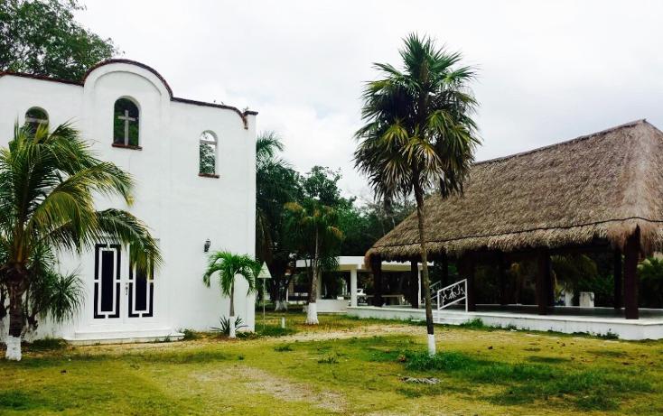 Foto de terreno habitacional en venta en  , el tigrillo, solidaridad, quintana roo, 1771450 No. 05