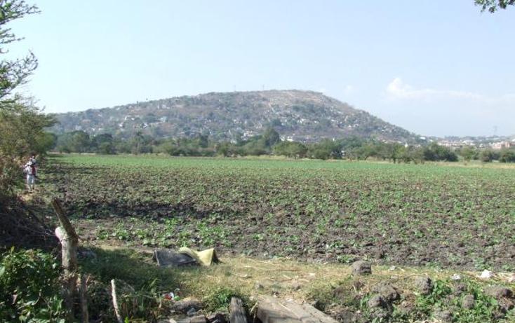 Foto de terreno habitacional en venta en  , el tomatal, emiliano zapata, morelos, 1261779 No. 02