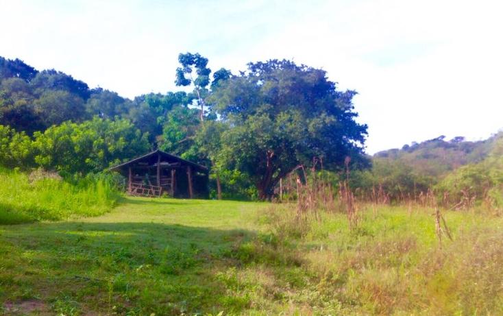 Foto de terreno habitacional en venta en  , el tuito, cabo corrientes, jalisco, 1682384 No. 03