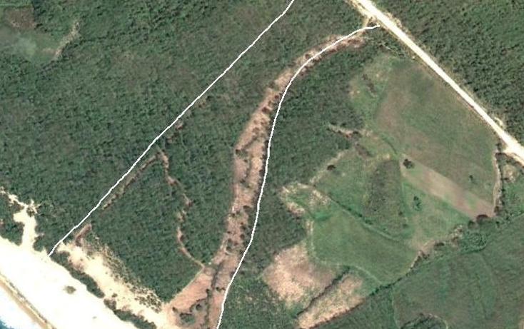 Foto de terreno comercial en venta en  , el tuito, cabo corrientes, jalisco, 497111 No. 11