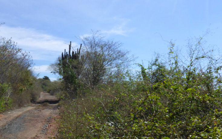 Foto de terreno comercial en venta en, el venadillo, mazatlán, sinaloa, 1172235 no 03