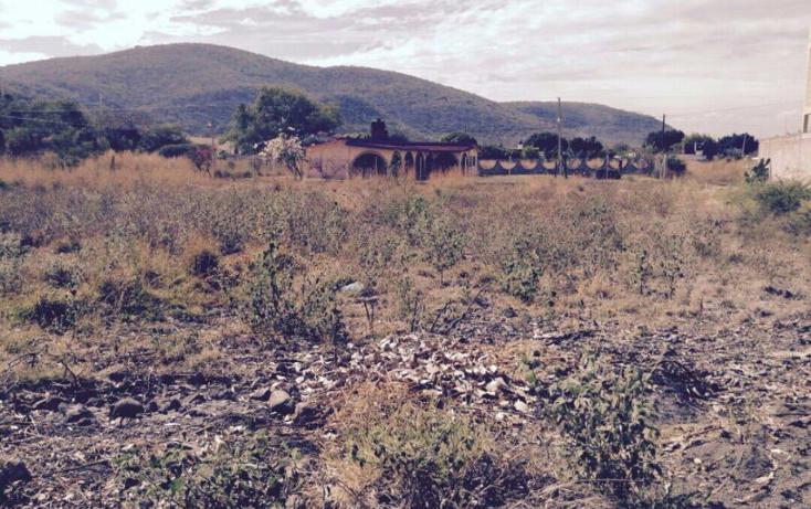 Foto de terreno habitacional en venta en  , el venadito, ayala, morelos, 1164009 No. 03