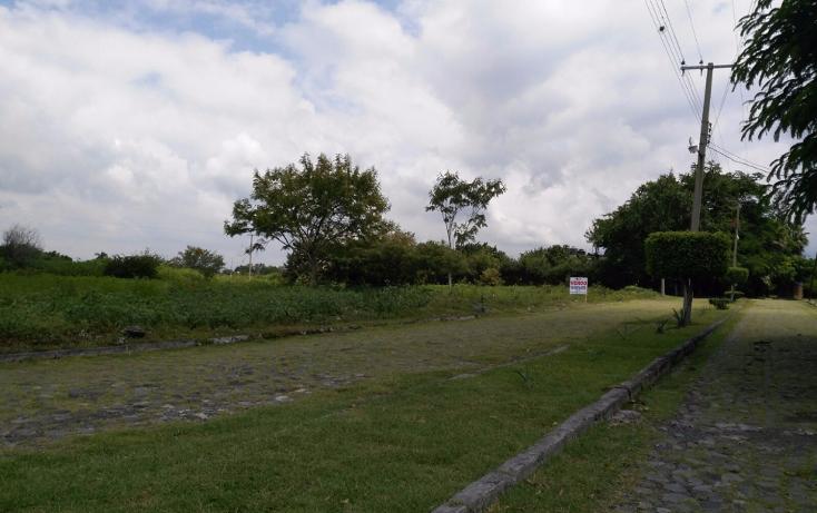 Foto de terreno habitacional en venta en  , el venadito, ayala, morelos, 1304483 No. 03
