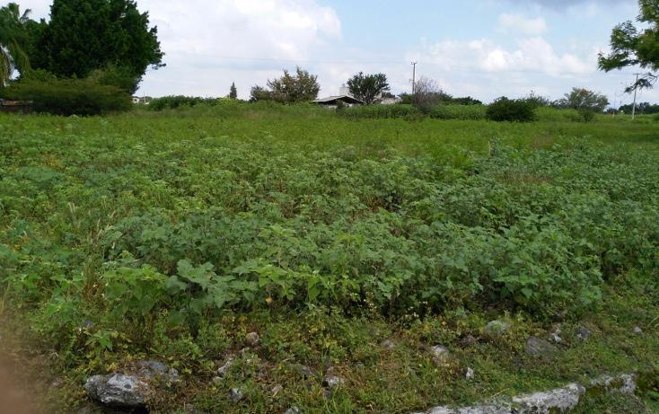 Foto de terreno habitacional en venta en  , el venadito, ayala, morelos, 1304483 No. 09
