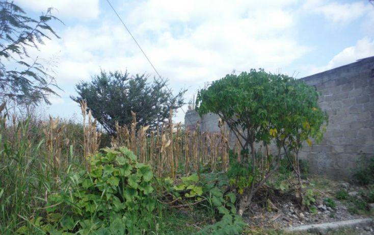Foto de terreno habitacional en venta en, el venadito, ayala, morelos, 1675232 no 02