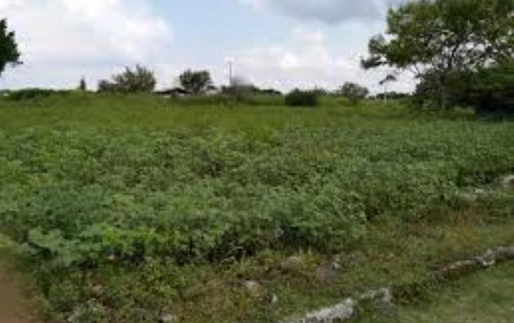 Foto de terreno habitacional en venta en  , el venadito, ayala, morelos, 1675238 No. 01