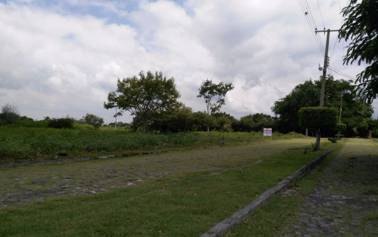 Foto de terreno habitacional en venta en, el venadito, ayala, morelos, 2028039 no 03