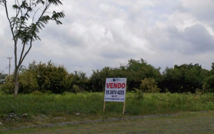Foto de terreno habitacional en venta en, el venadito, ayala, morelos, 2028039 no 05
