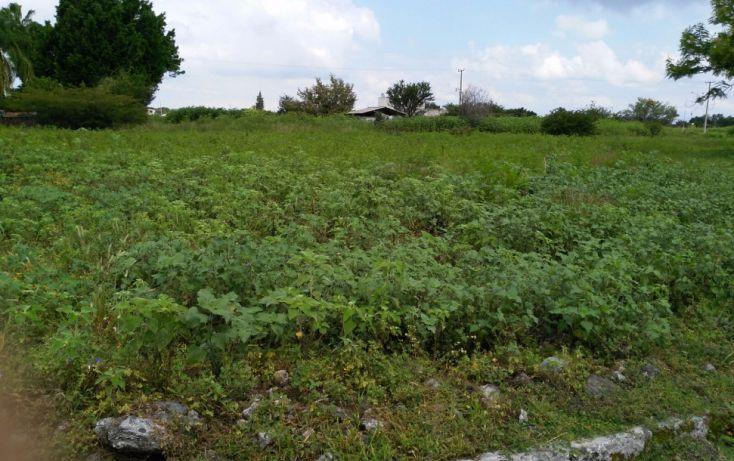 Foto de terreno habitacional en venta en, el venadito, ayala, morelos, 2028039 no 09
